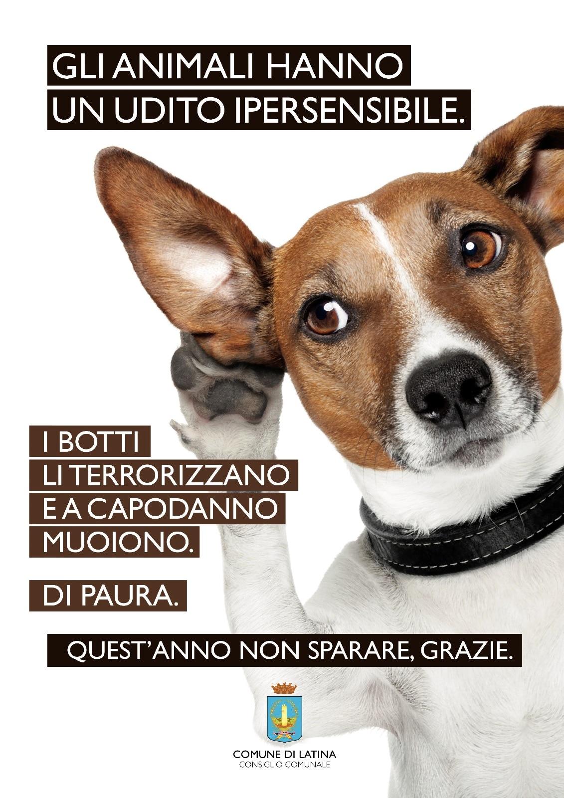 botti_animali_campagna_comune-2