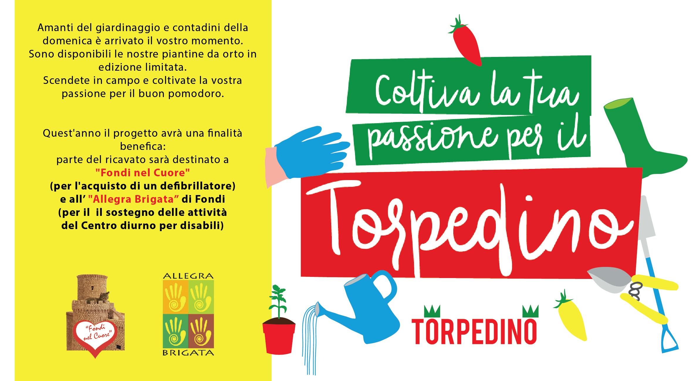 campagna_adotta_torpedino-2