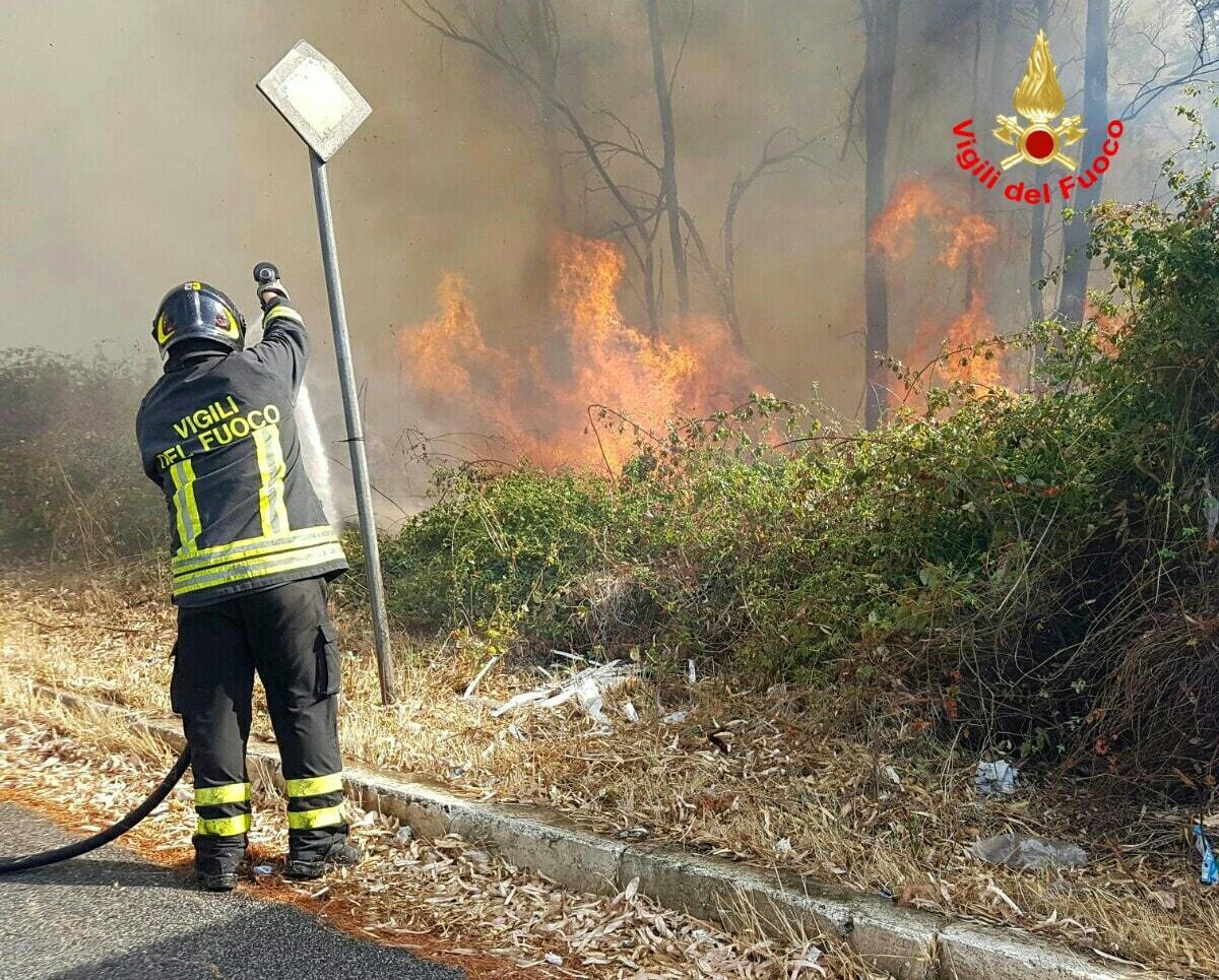 incendio_borgo_piave_19_08_16_1-2