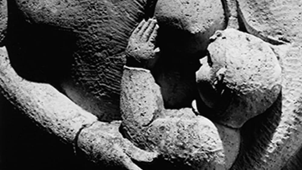 21 ex ONMI_Allegoria della Maternità-2