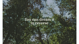 [2020] Black Tail-You Can Dream It In Reverse (smaller)-2