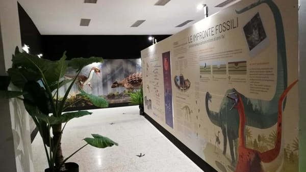 foto mostra dinosauri - tel 12-12-2019 (3)-2