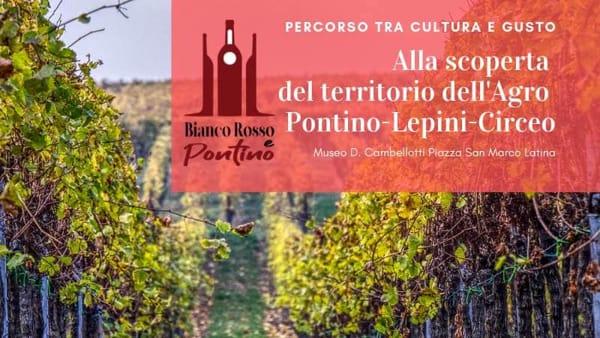 Bianco Rosso e Pontino: alla scoperta di vini e birre, tra cultura ed eccellenze locali