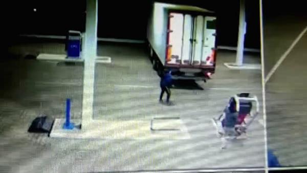 Ladri seriali in manette, banda in azione: sette arresti | IL VIDEO