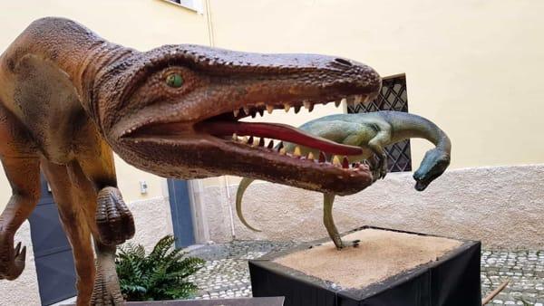 Prorogata la mostra Dinosauria al Palazzo Rappini