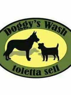 Doggy's Whash Latina